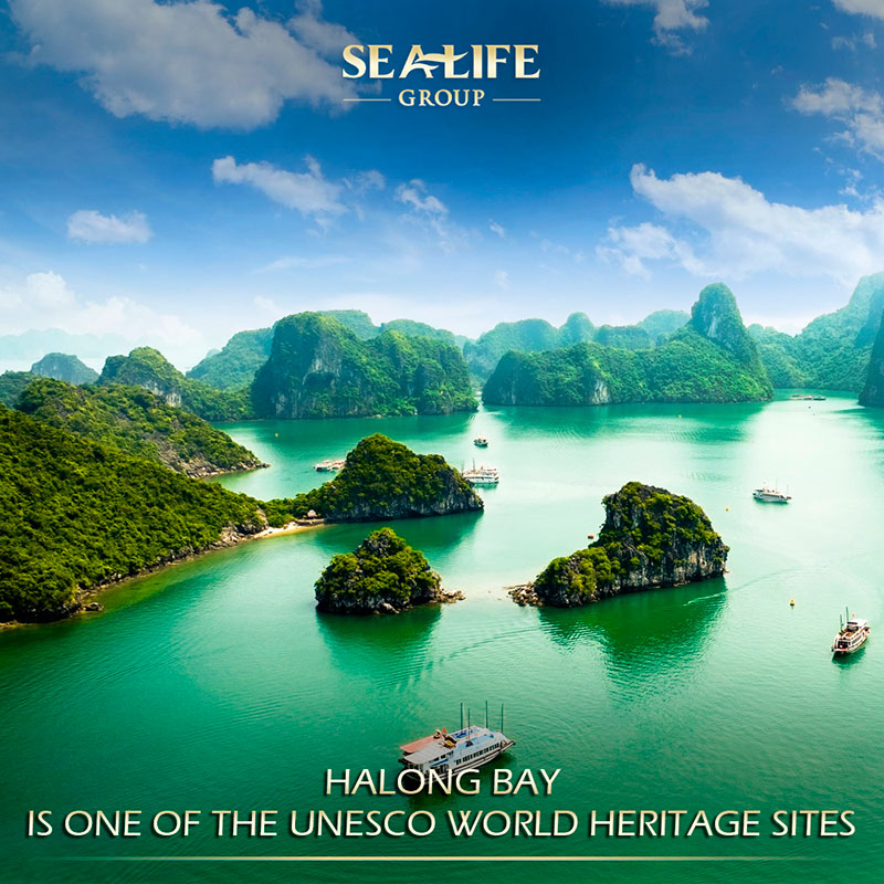 The legend of Ha Long Bay and 5 Amazing Caves to explore
